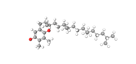 Tocopherol (model).png