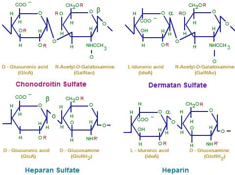 glycosaminoglycans-structure
