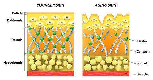 YoungerOlder Skin 500x262_26lU75pVTlCYAE8I94cf-500x262.jpg